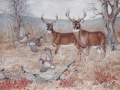 deer-commissioned-art-julie-woods