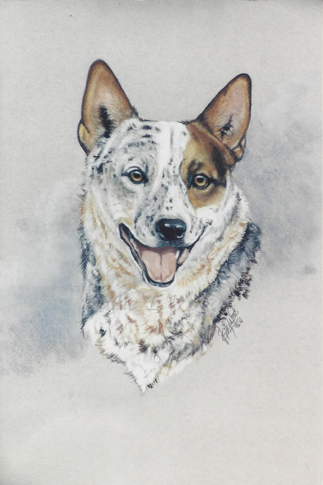 canine-art-julie-woods