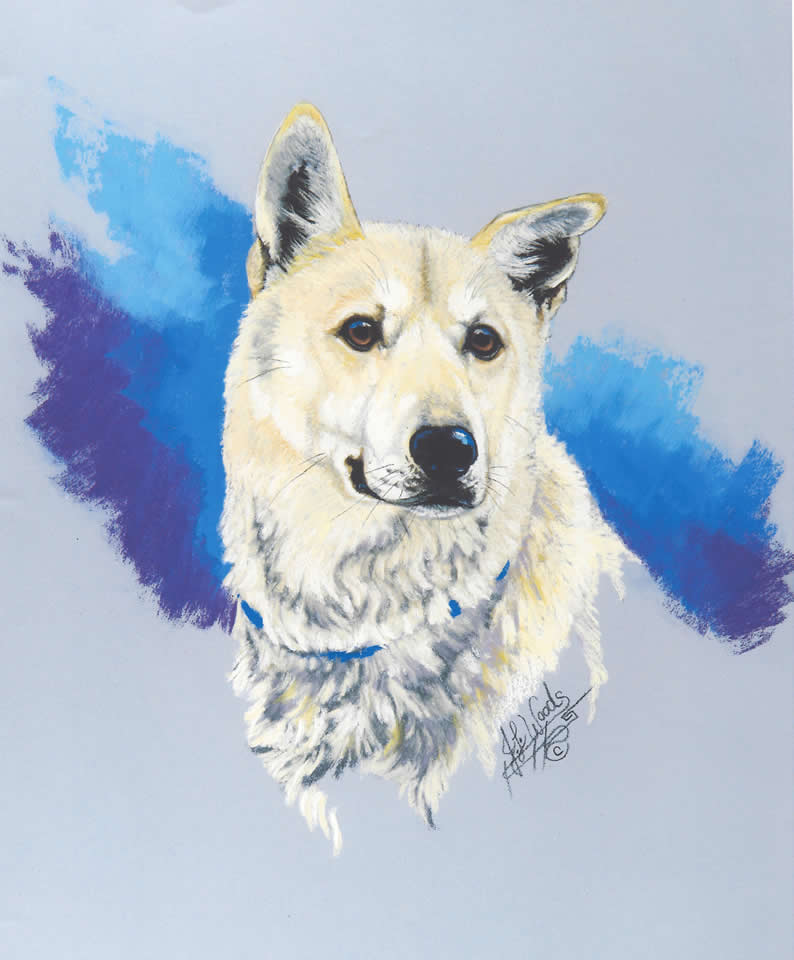 canine-friend-art-julie-woods