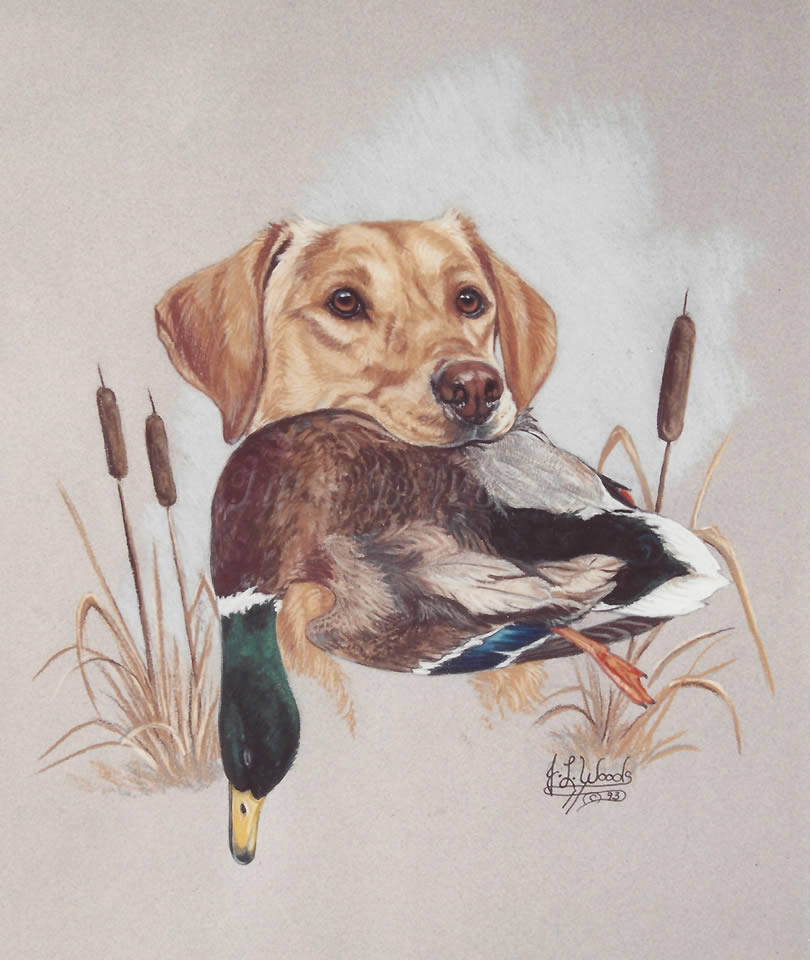 canine-hunting-dog-julie-woods-art