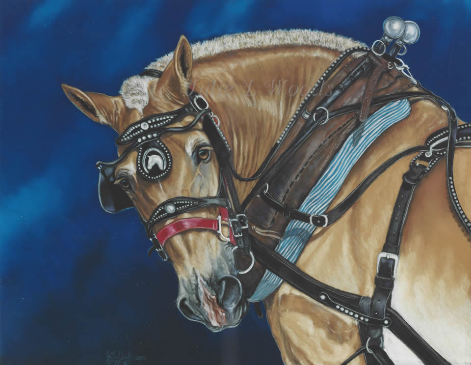 horse-bill-julie-woods-art