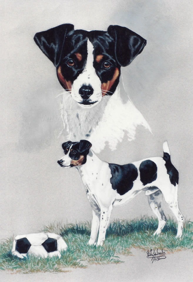 rat-terrier-by-julie-woods-art