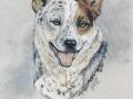 canine-art-julie-woods