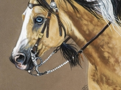 HorseOfAnotherColor